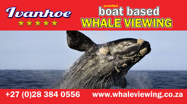Ivanhoe Sea Safaris